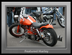 Featured harley photo